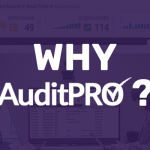 Why AuditPRO?